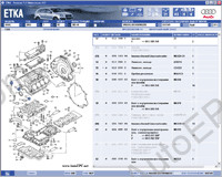 Audi VW Skoda Seat ETKA 7.1 spare parts catalogue contains the catalogue of parts and accessories for all models of the Audi, a Volkswagen, Skoda, Сеат released for European, American, Brazilian, Chinese, Mexican